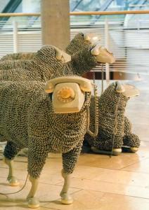 Cornec's Sheep