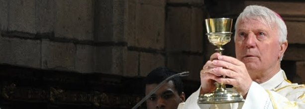 Bispo da Guarda: Saudação pelo novo bispo de Viseu