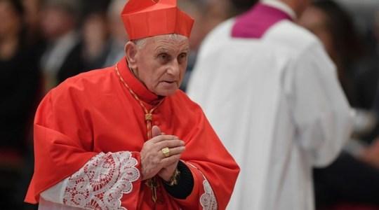 Niezwykłe świadectwo kardynała na temat Medjugorie(Vatican Service News -07.08.2017)