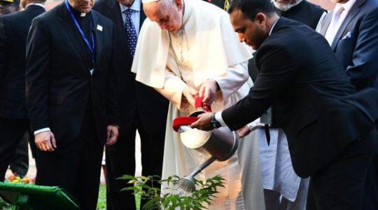 Ojciec święty w  Bangladeszu (Vatican Service News - 30.11.2017)