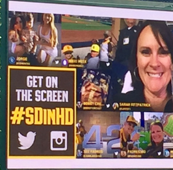 Party in The Park - #SDinHD Get on the Screen!