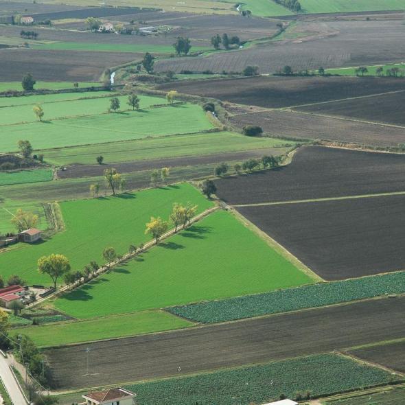 paesaggi rurali della campania  unimmensa variet