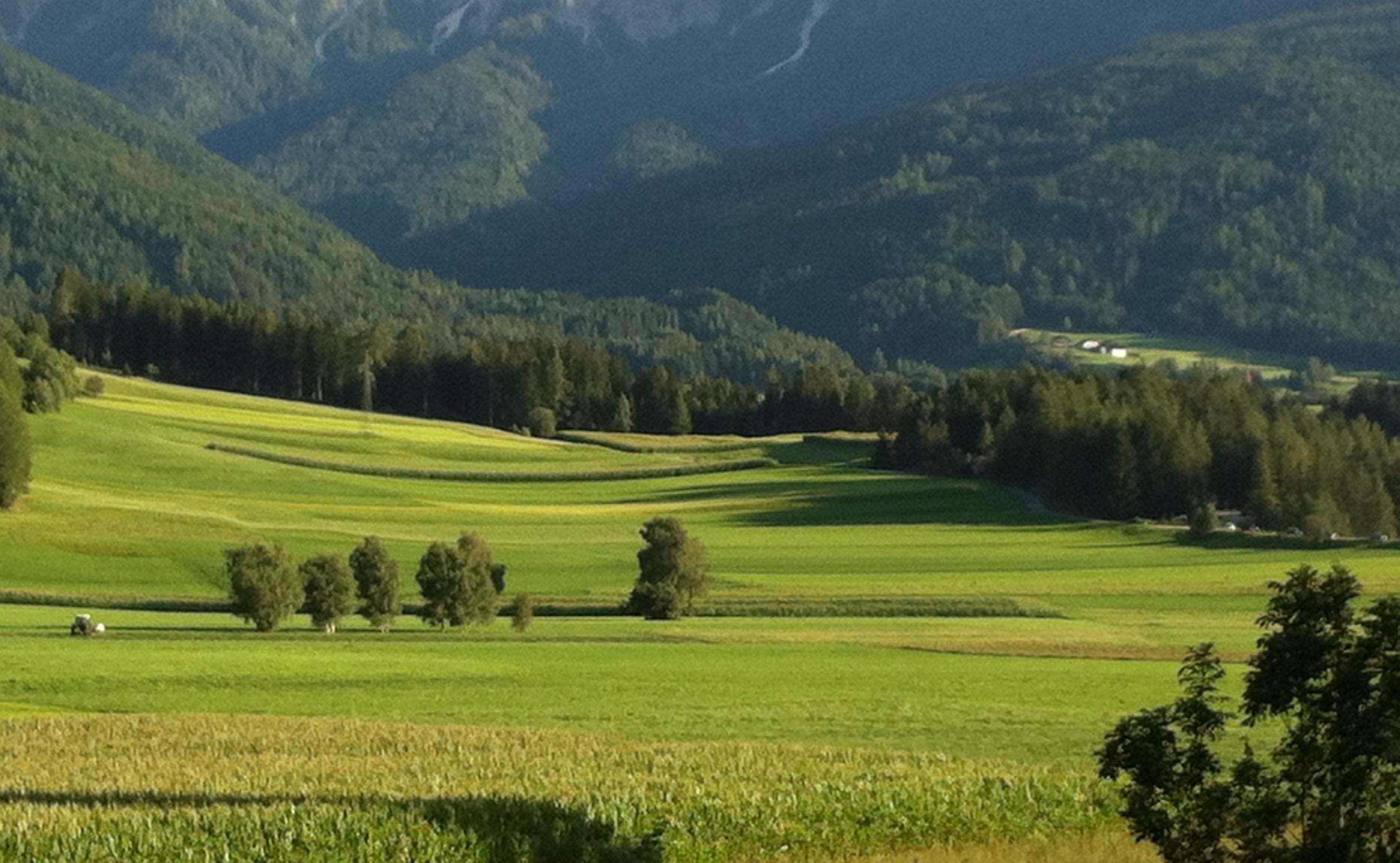 Paesaggi Alpini Estivi