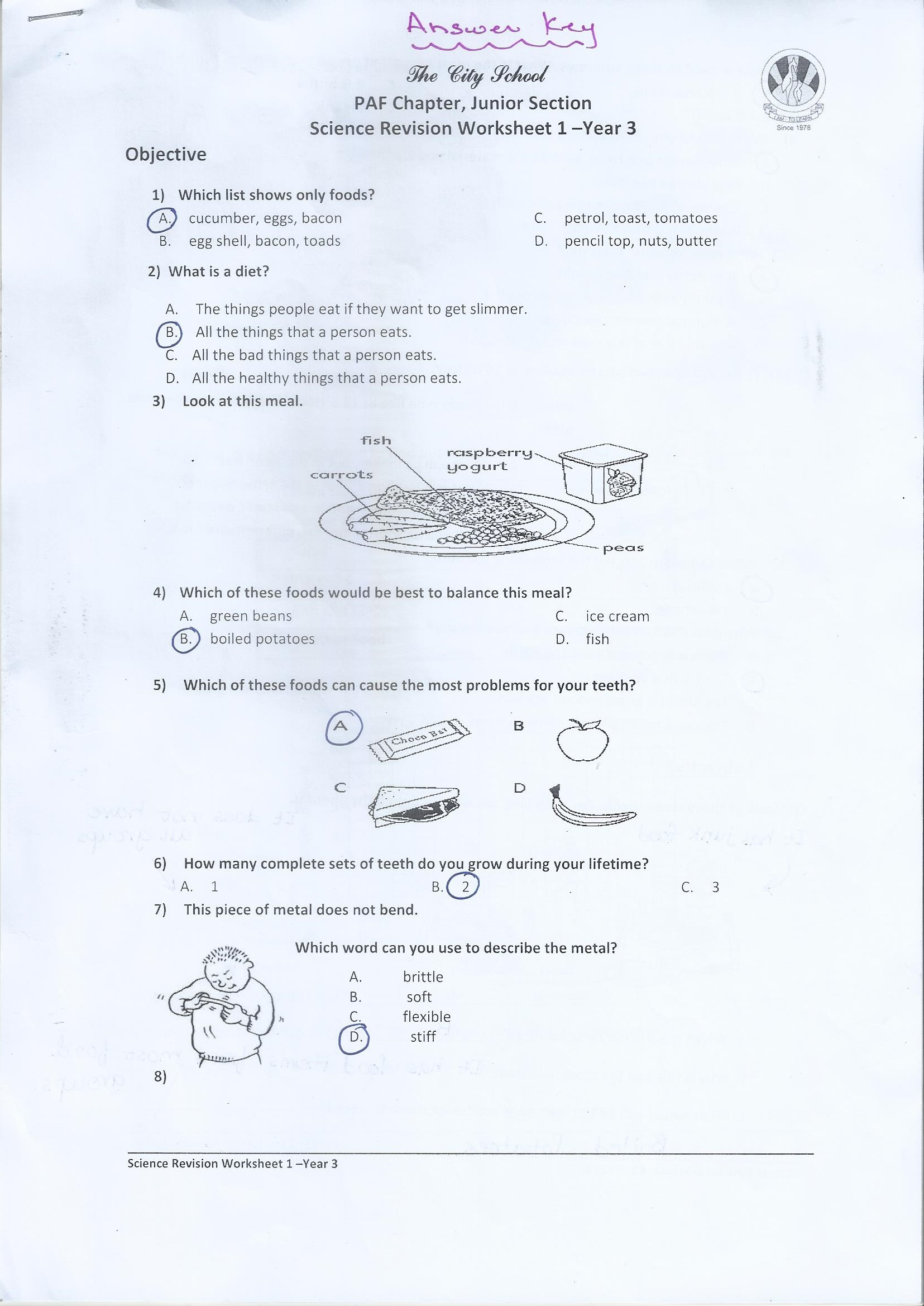 Class 3 Home Work / Worksheets – PAF JUNIORS [ 1067 x 756 Pixel ]