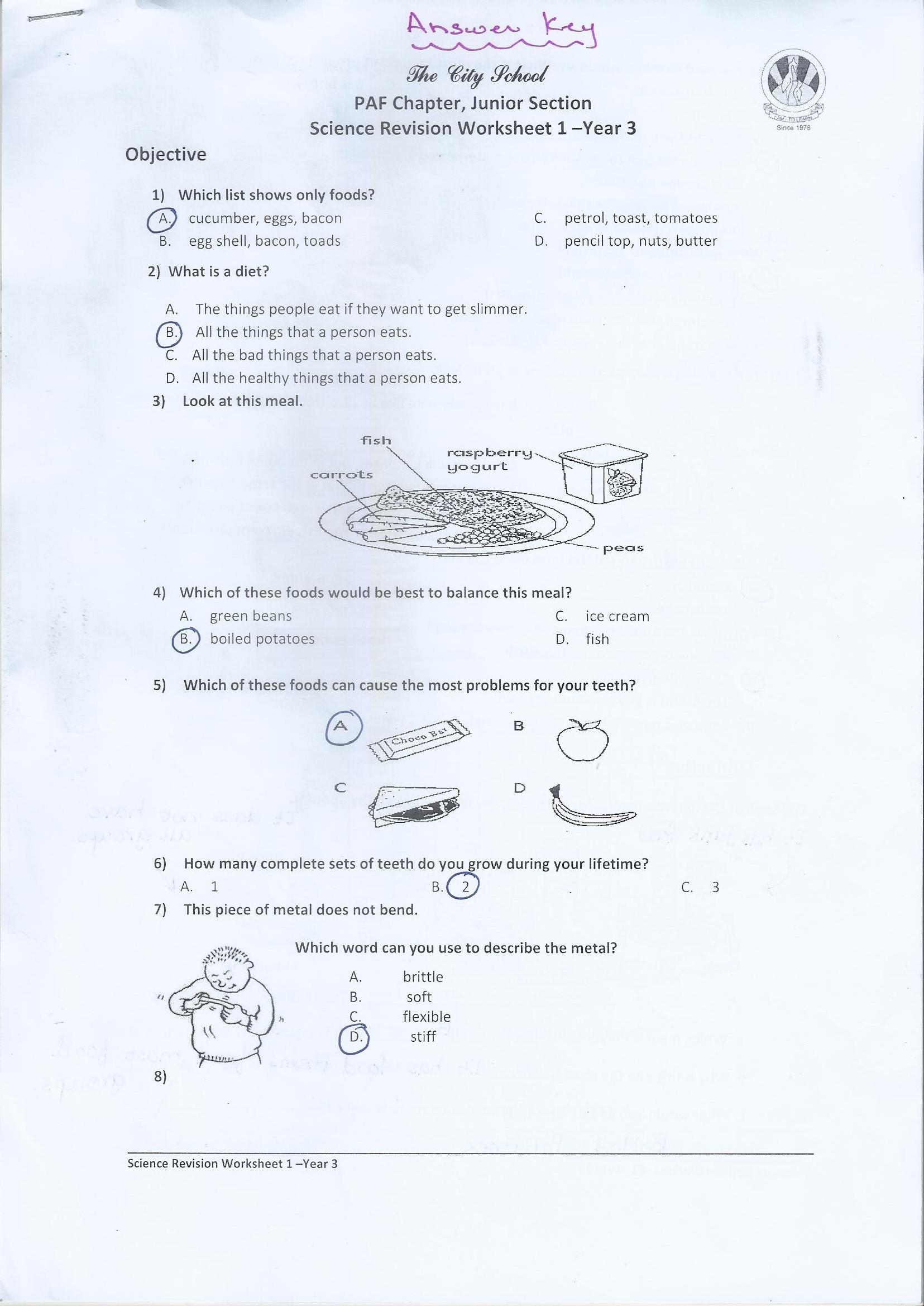 medium resolution of Class 3 Home Work / Worksheets – PAF JUNIORS