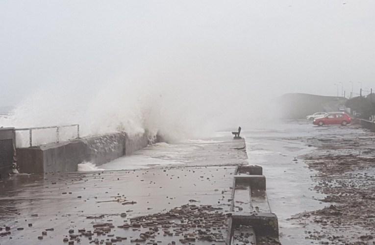 Οι σφοδροί άνεμοι έφεραν καταστροφές στην Πάφο