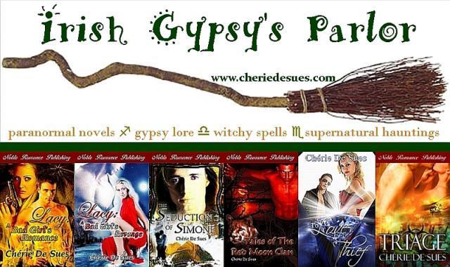 banner-irish-gypsy-novels1