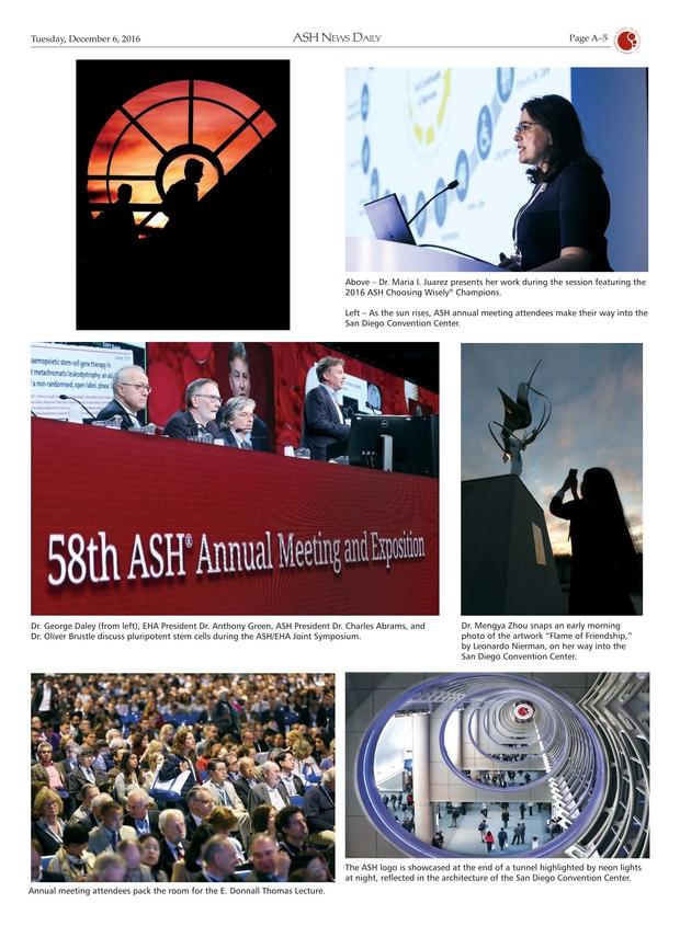 ash news daily 2016