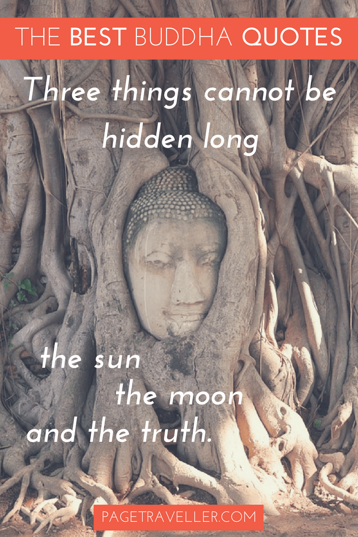 Buddha Quote Truth - Tree Face
