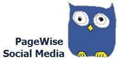 PageWise Social Media Logo