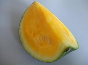 Melonen  kstlich und kalorienarm