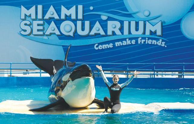 Miami Seaquarium Amerika Serikat