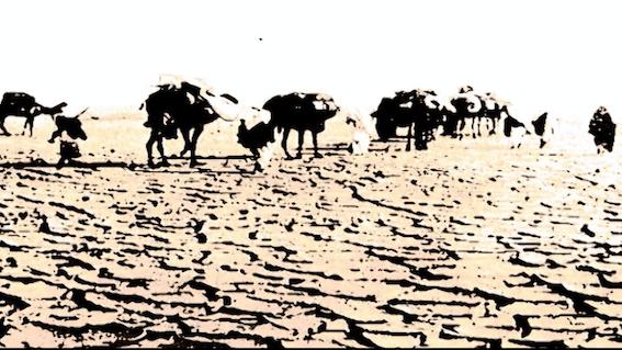 COLONIALISMO. Paolo Caccia Dominioni e la ricerca delle salme sepolte nel deserto