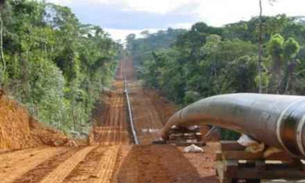 AFRICA. Tanzania-Uganda, la lotta contro l'oleodotto più grande al mondo