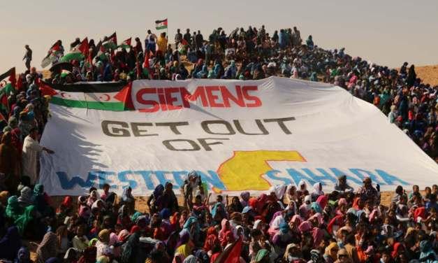 Il Sahara occidentale tra occupazione e greenwashing
