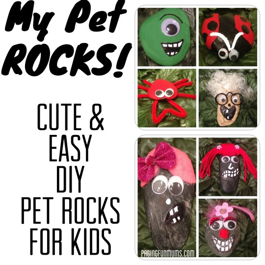 My Pet Rocks! Pet Rock Craft for Kids