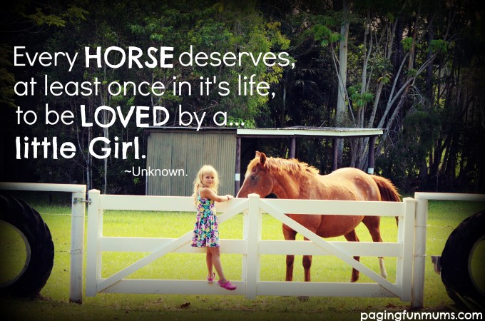 Every horse deserves, at least once in it's life, to be loved by a little girl.