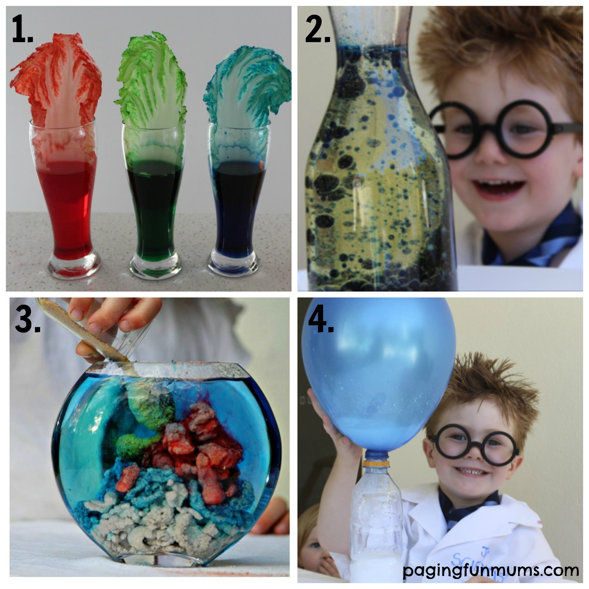 21 + Fun Science Experiments for Kids 1-4 - Paging Fun Mums