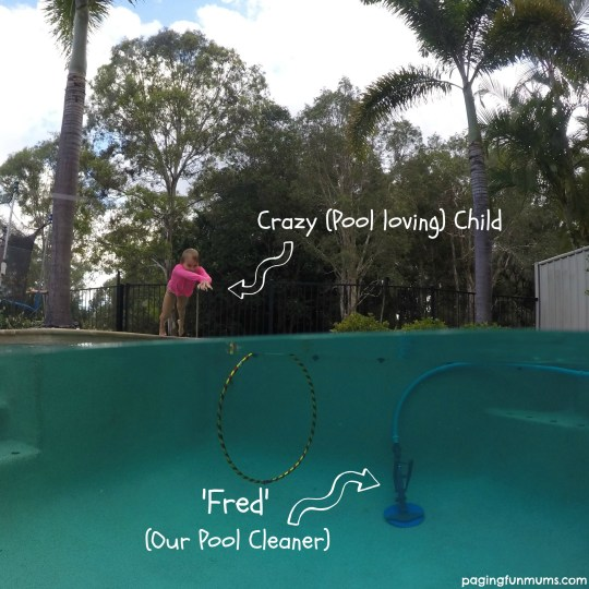Kreepy Krauly Pool Cleaners ROCK!