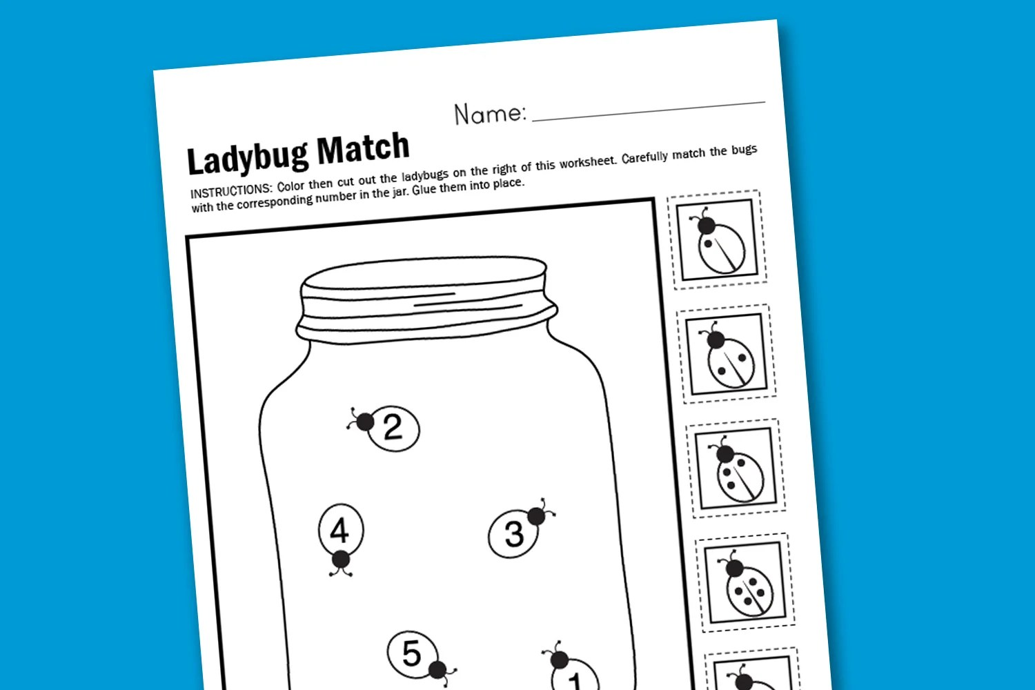 Worksheet Wednesday Ladybug Matching
