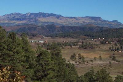 Upper hwy 84 pagosa landscape