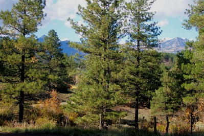 Pagosa Development