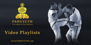 Pahuyuth-twitter-video-playlists