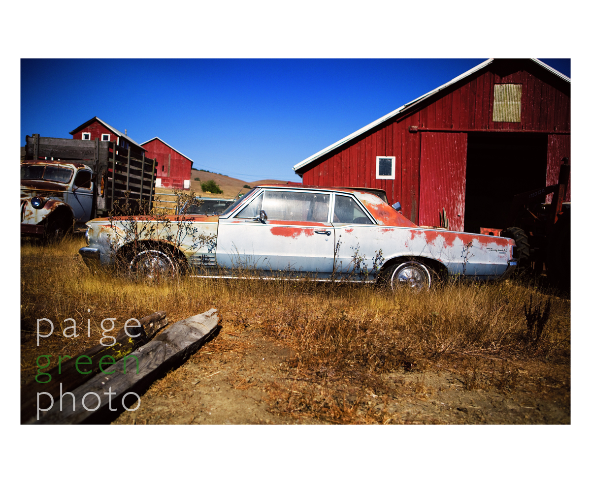 rusty-car_mg_4775-1