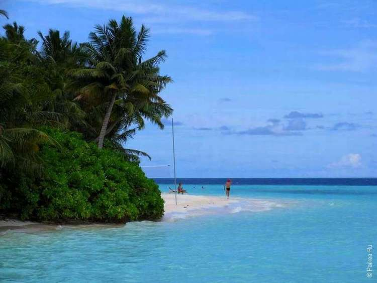 Мальдивы туры цена на двоих