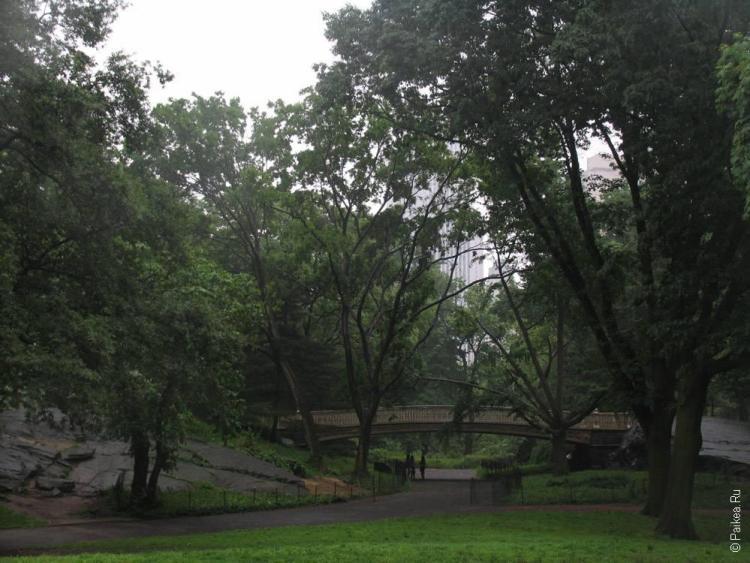 мост в центральном парке нью-йорк