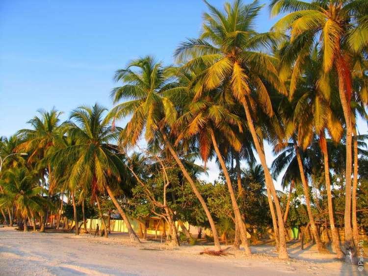 Пляж на острове Маафуши