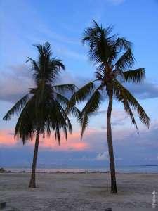 Мальдивы недорого