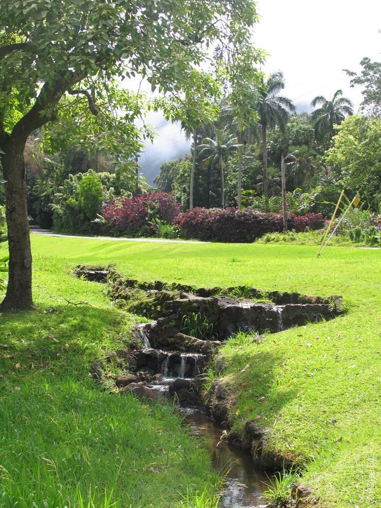Оаху, Гавайи - ручей на лугу