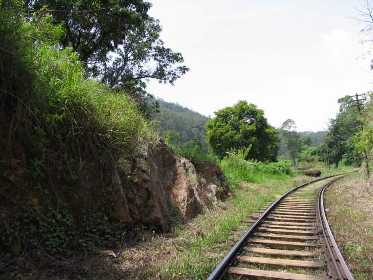 Элла Рок Шри Ланка 01