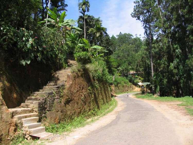 Малый пик Адама, Элла, Шри-Ланка 01