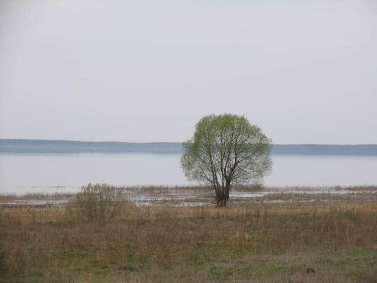 Тихие воды плещеева озера
