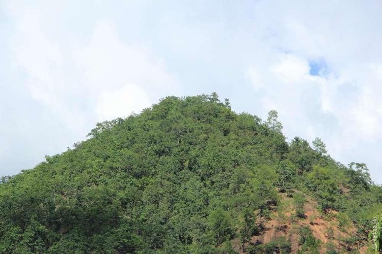 Самые любопытные и смелые совершают треккинг на этот холм