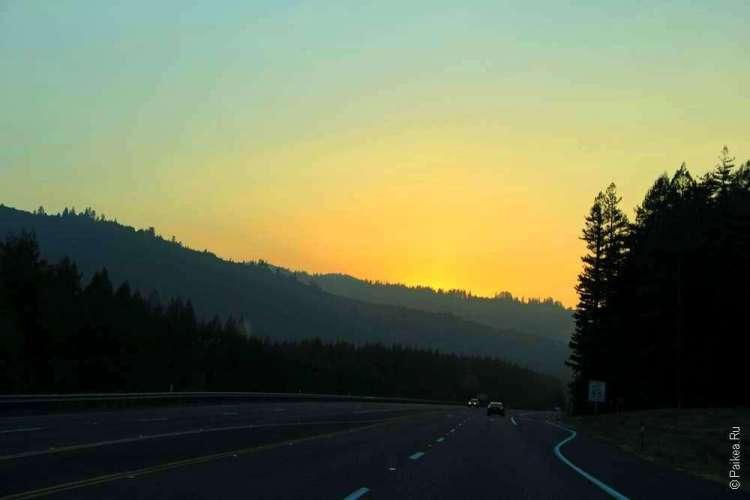 Закат над лесом и дорогой