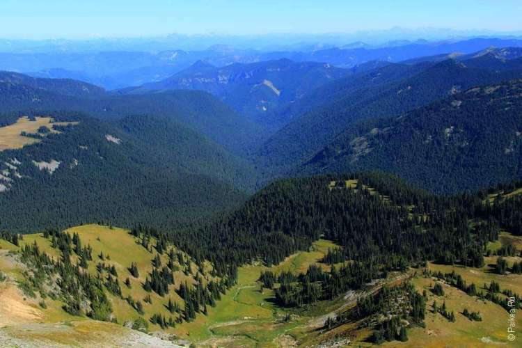 маунт рейнир красивый горный пейзаж в парке