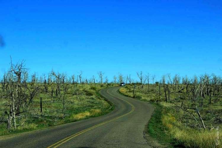 Горная дорога в парке Меса-Верде