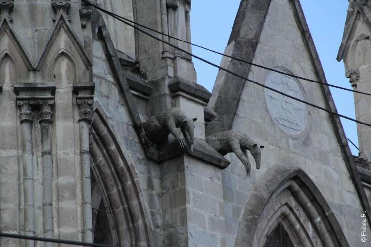 статуи животных на стенах готического собора