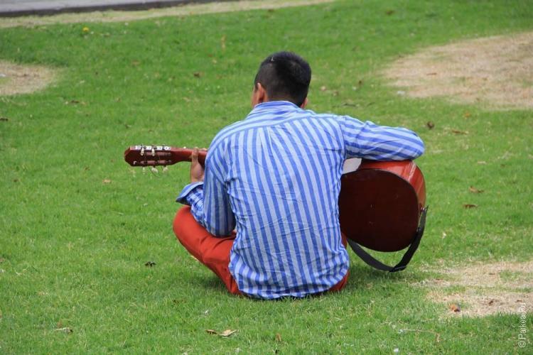 мужик с гитарой