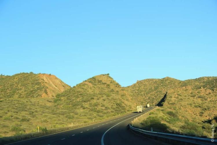 Вот она, зеленая Аризона!
