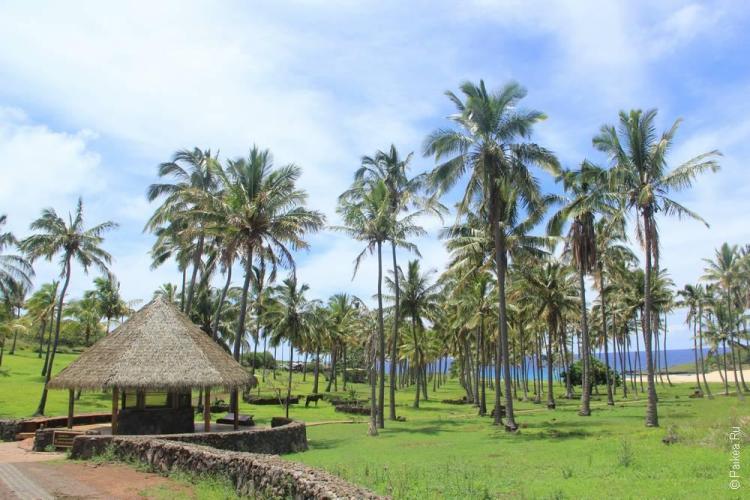 Бухта Анакена на острове пасхи