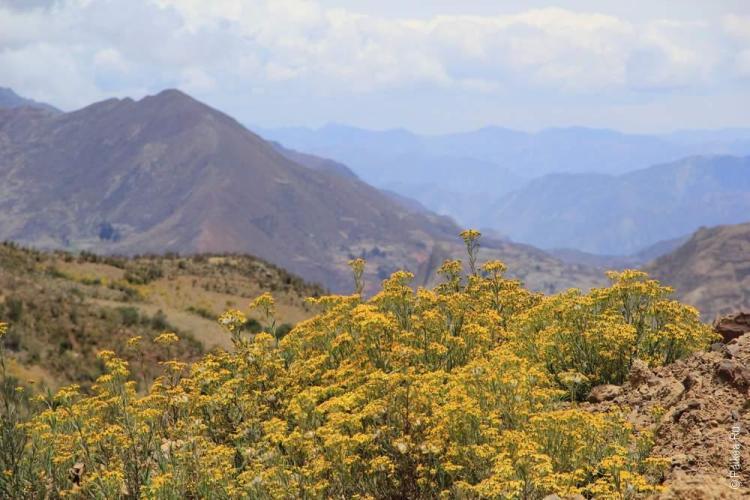 А еще можно пойти в трек в каньон - для любителей походить, но мы пришли неподготовленными