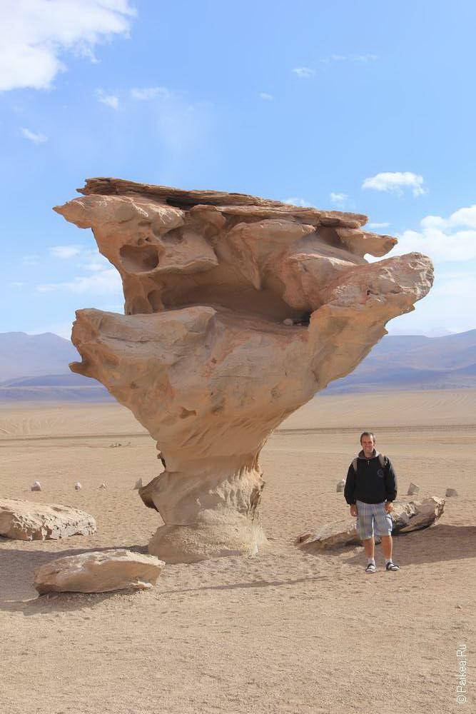 А иногда в Боливии растут каменные грибы