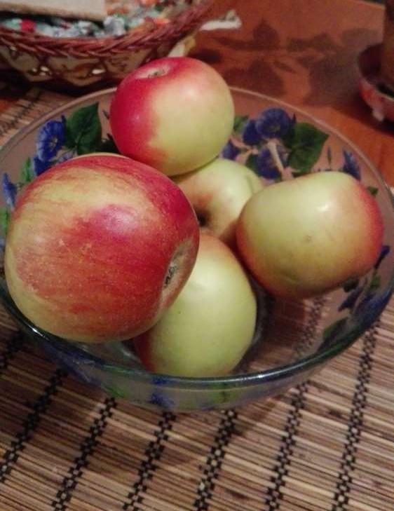 простые рецепты домашней кухни