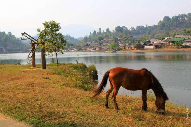 Северный Таиланд Бан Рак Тай