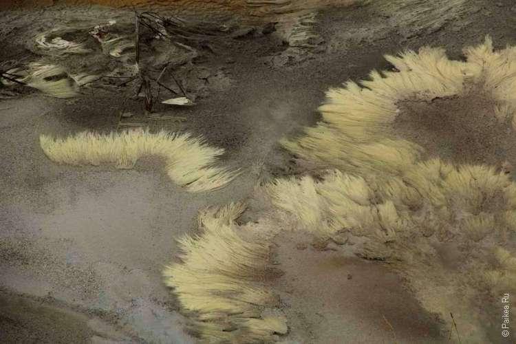 Минеральные отложения в термальных водах