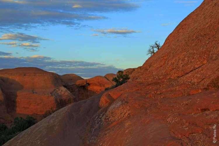 Тропа среди скалистого плато